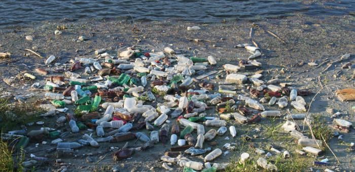 bottles-87342_1920