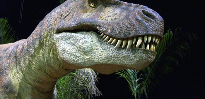 dinosaur-344131_1920