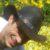 Profilbild von Toby Schulz