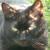 Profilbild von Elja